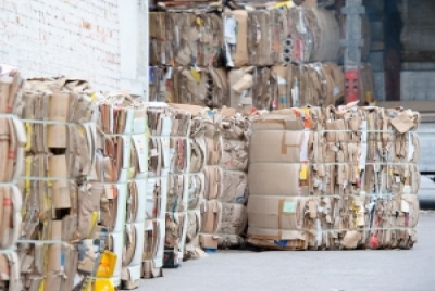 Sustainable Tech Companies Plan to Invest $300 Million in Recycled Paper/OCC Facilities in the U.S.