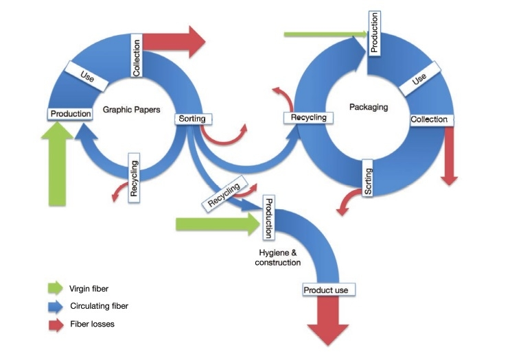 The new publication on paper recycling
